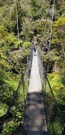 47 metre long suspension bridge on Abel Tasman Great Walk