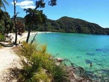 Sandy Bark Bay Abel Tasman Coastal Track