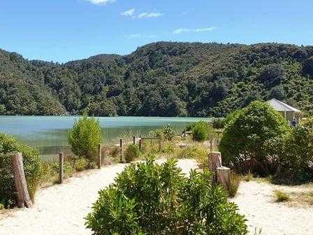 Bark Bay Campsite Abel Tasman National Park Campsite
