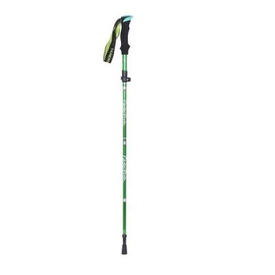 Green Hiking Pole Vertical extended display